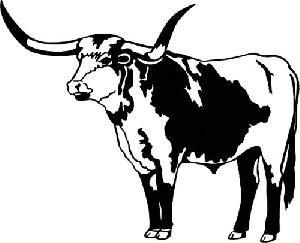 Pin By Jodi Boggs On Hawkridge Our Restaurant Designs Longhorn Longhorn Cow Cow