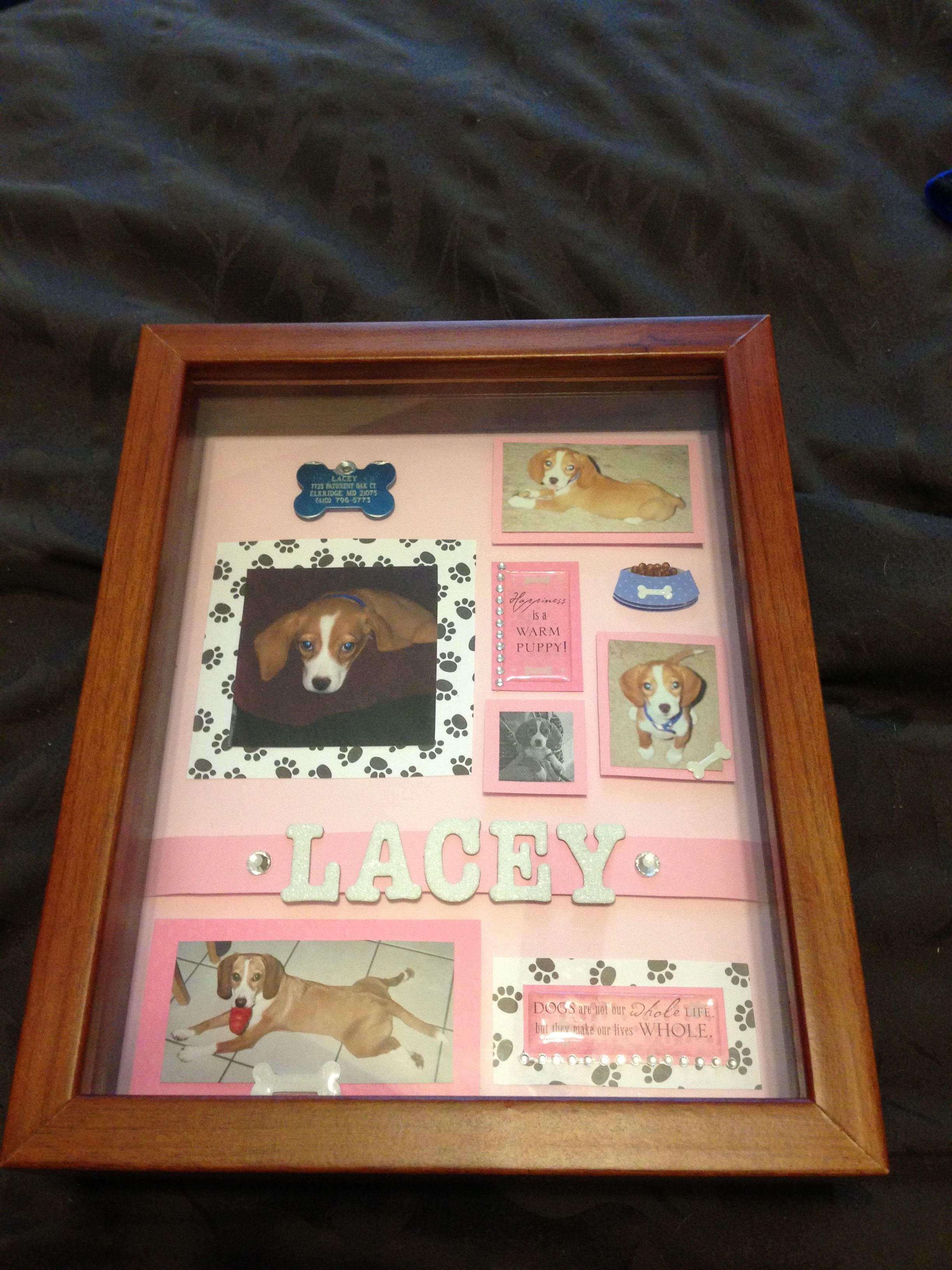 shadow memory box of my beloved deceased dog craft ideas perros mascotas. Black Bedroom Furniture Sets. Home Design Ideas