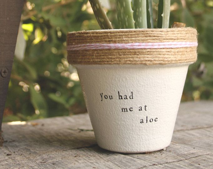 Browse unique items from PlantPuns on Etsy, a global marketplace of handmade, vintage and creative goods.