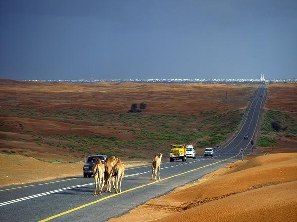 The Beauty of Abu Dhabi...