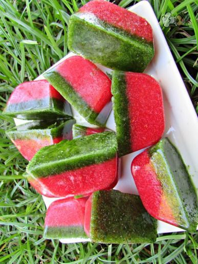Frozen Strawberry Spinach Dog Treats Vegan Homemade Pet