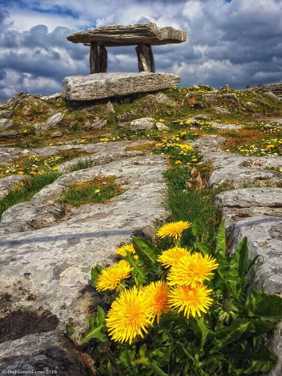 @under the thatch: RT @The Planet D The beauty of The Burren and Poulnabrone Dolmen along Ireland's #WIldAtlanticWay