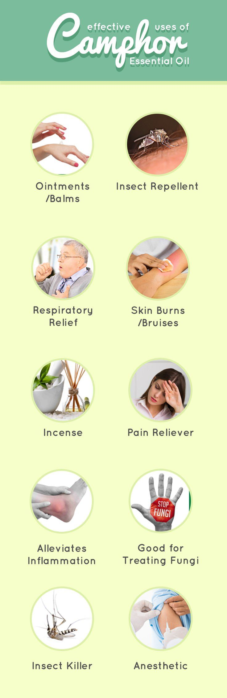 10 Awesome Ways To Use Camphor Essential Oil | Good Witch