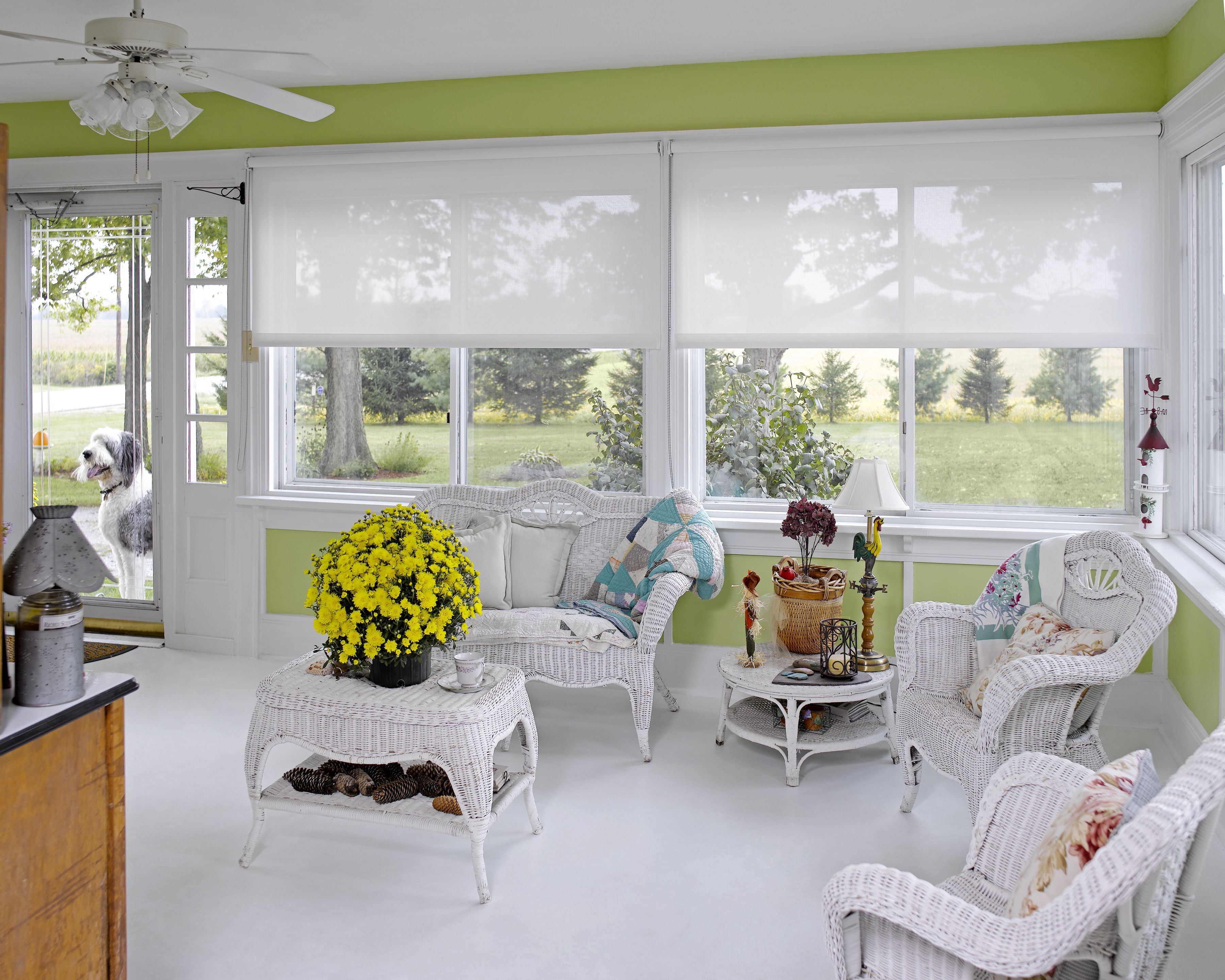 Roller Shades In The Sun Room Roller Shades Budget
