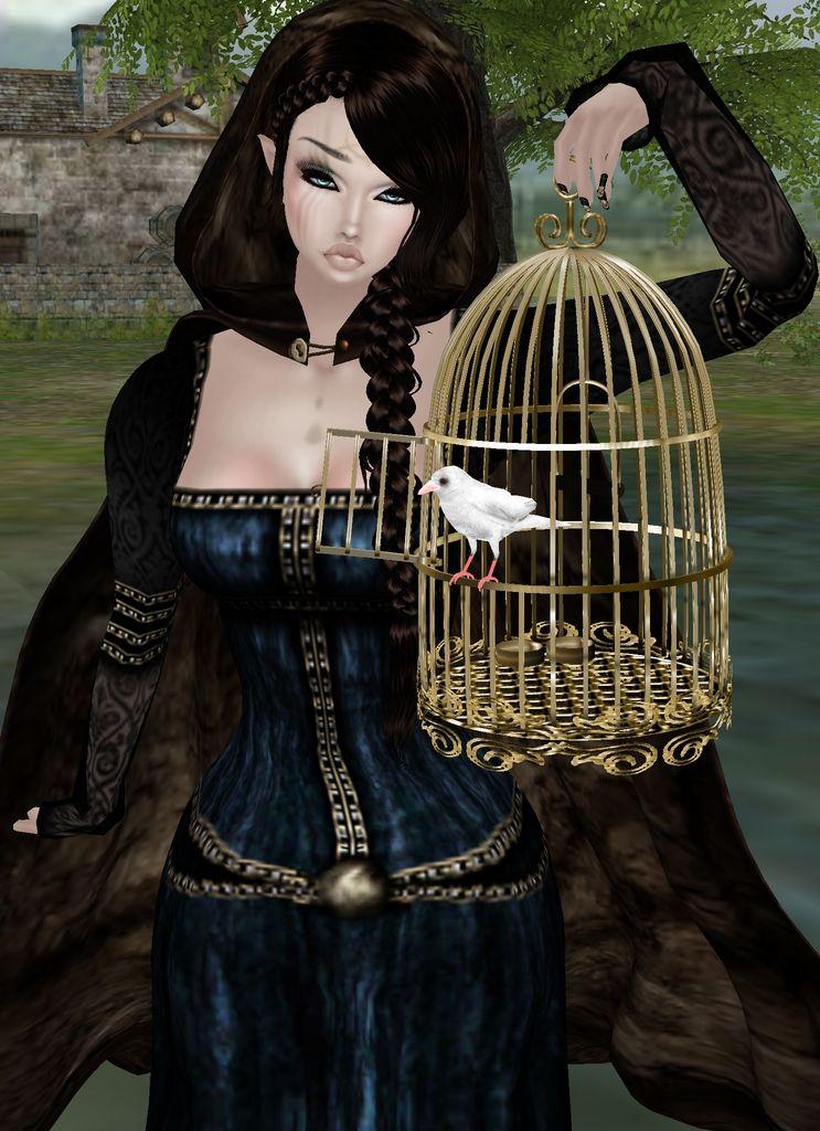 """""""Fly Away Little Birdie!"""""""