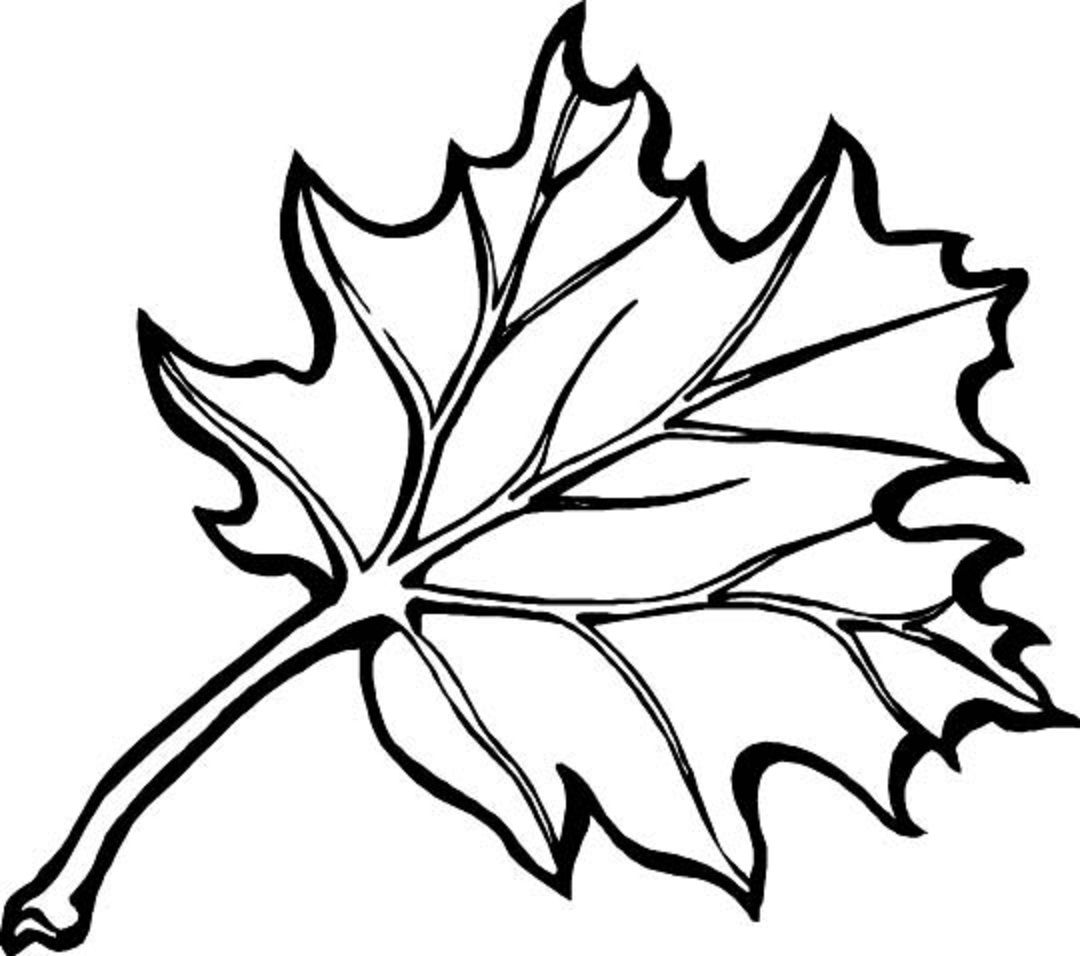 fall leaves coloring pages kindergarten - photo#8