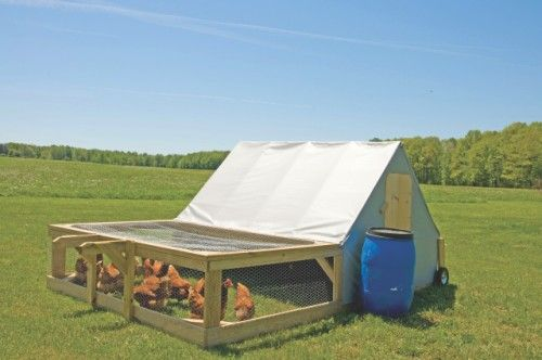Mobile chicken coops free range bing images chicken for Free range chicken coop plans