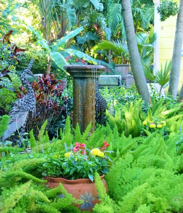 Photo by Allison LaBossiere - After: Fountain surrounded by Foxtail ...