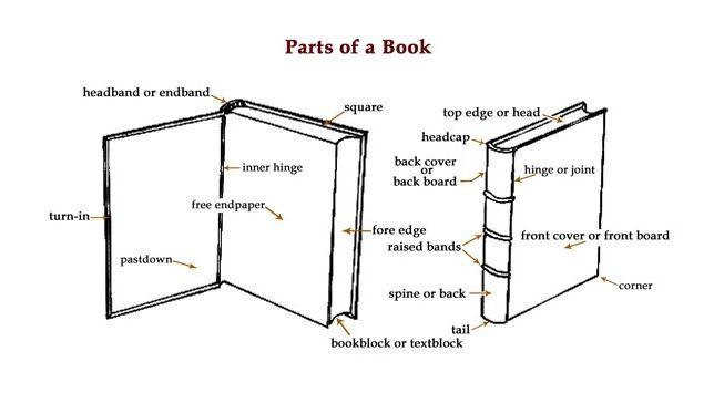 a2ca30753ece6721685bc81e8e68bdf4 book diagrams parts of a book book binding pinterest diagram