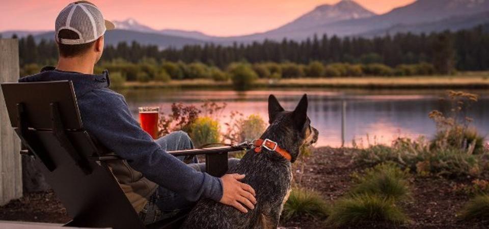 The Best Pet Friendly Hotels In Lake Tahoe Dog Friendly Hotels Lake Tahoe Hotels South Lake Tahoe Hotels