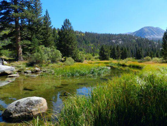Rock Creek Lodge. Mammoth. Cabins. Good reviews