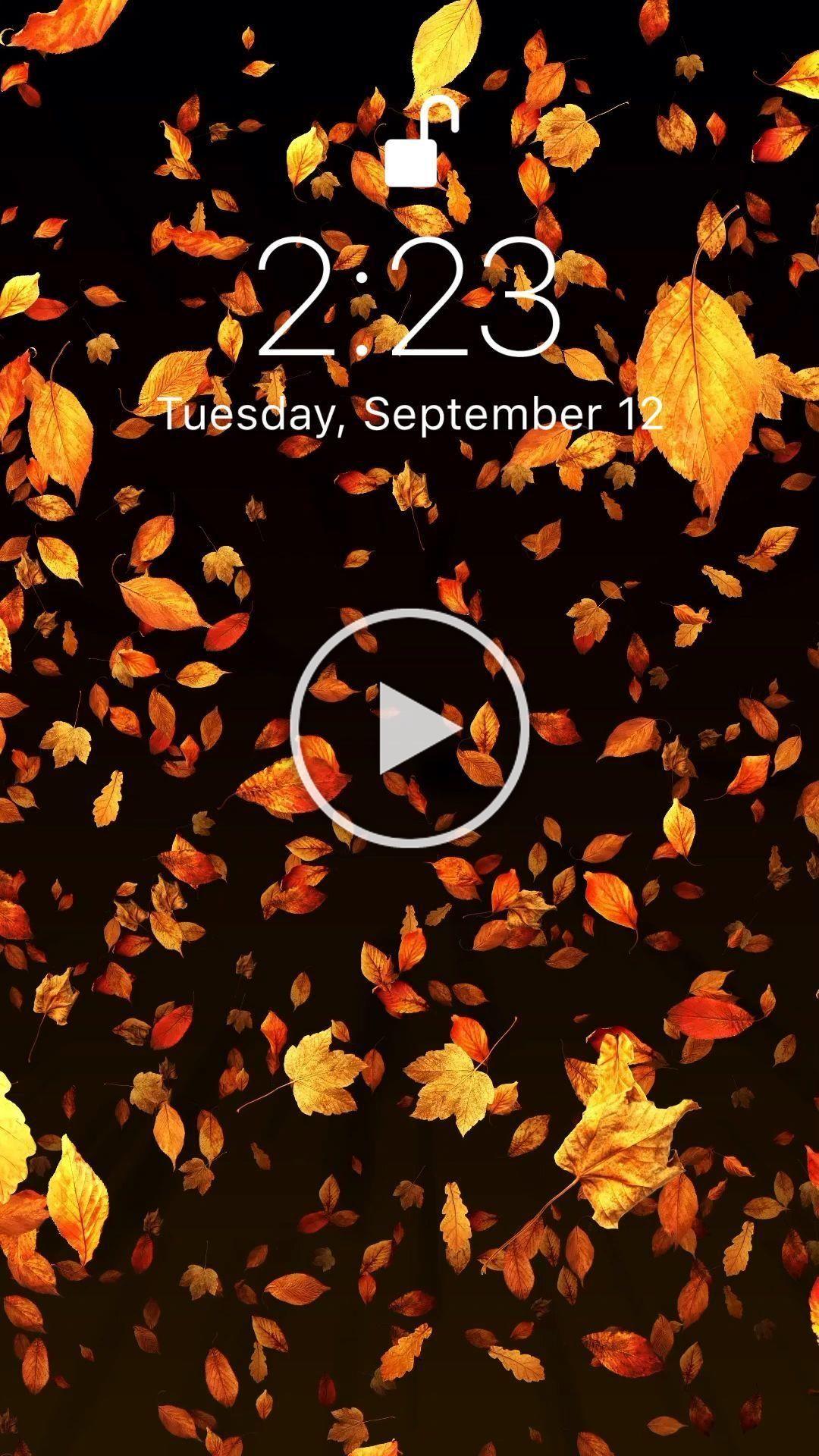 Samsung Wallpaper Videos Hintergrundbild Tapete September Calendar Live Wallpaper For Your Ipho Calendar Wallpaper September Wallpaper Iphone Wallpaper Video