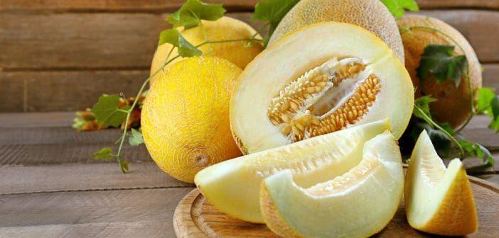 Le melon jaune fait il grossir ?   Melon jaune, Aliments
