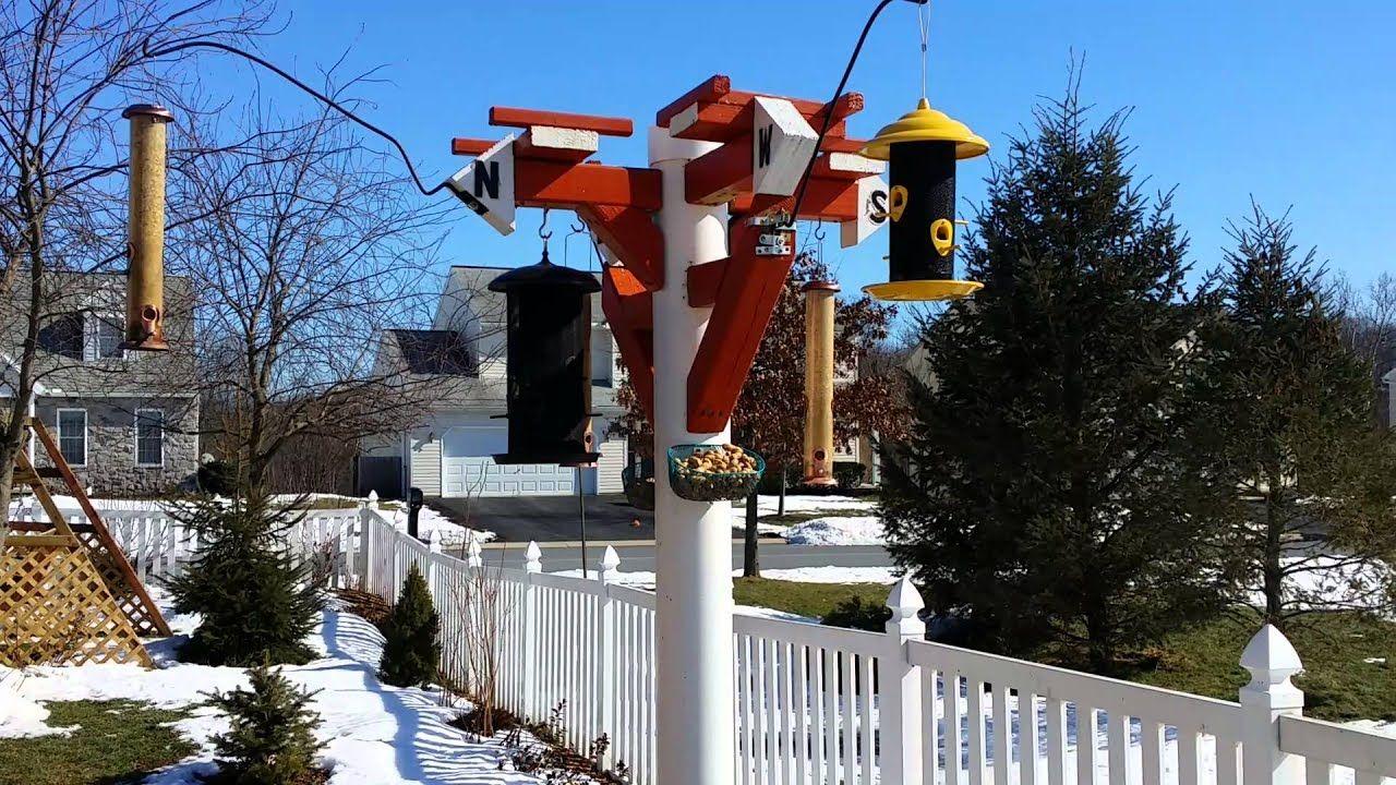 Bird feeder PVC pole Bird feeder poles, Homemade bird