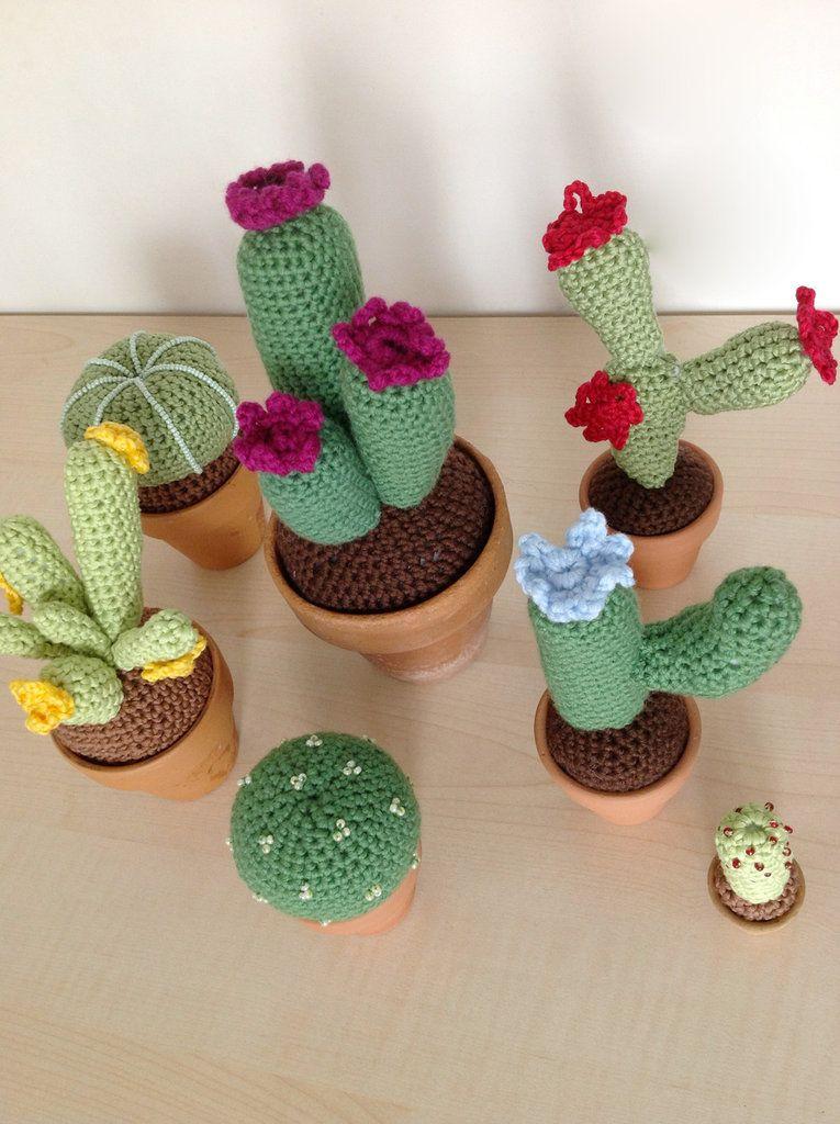 Amigurumi a uncinetto piante grasse voglia di crochet for Piante grasse uncinetto