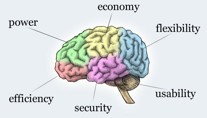 easy brain diagram all wiring diagrams jobspapa fit workout of the