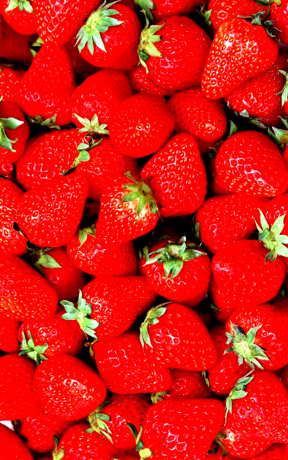Red Strawberry iPhone Wallpaper Best iPhone Wallpaper in