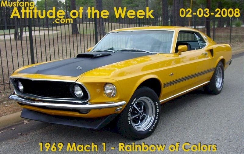 Special Yellow 1969 Mach 1 Rainbow Of Colors Gas Ronda Special Ford Mustang Fastback Mustangattitude Com Mobil Mustang Mustang Fastback 1969 Mustang Mach 1