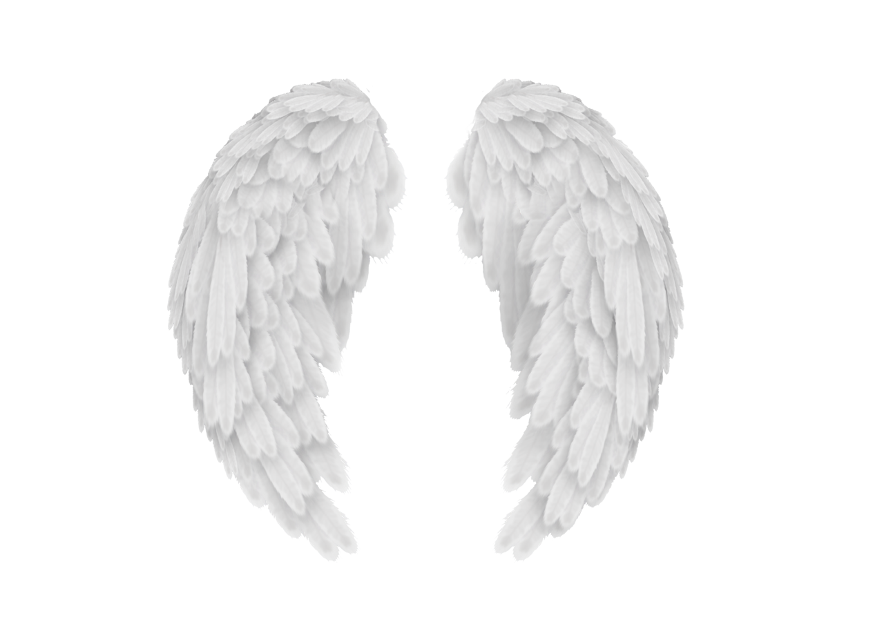 Ohlord3 Wings Png Wings Angel