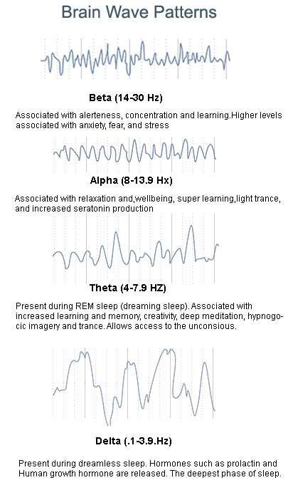 Frequency of Delta Waves in Sleep Study | Sciencing