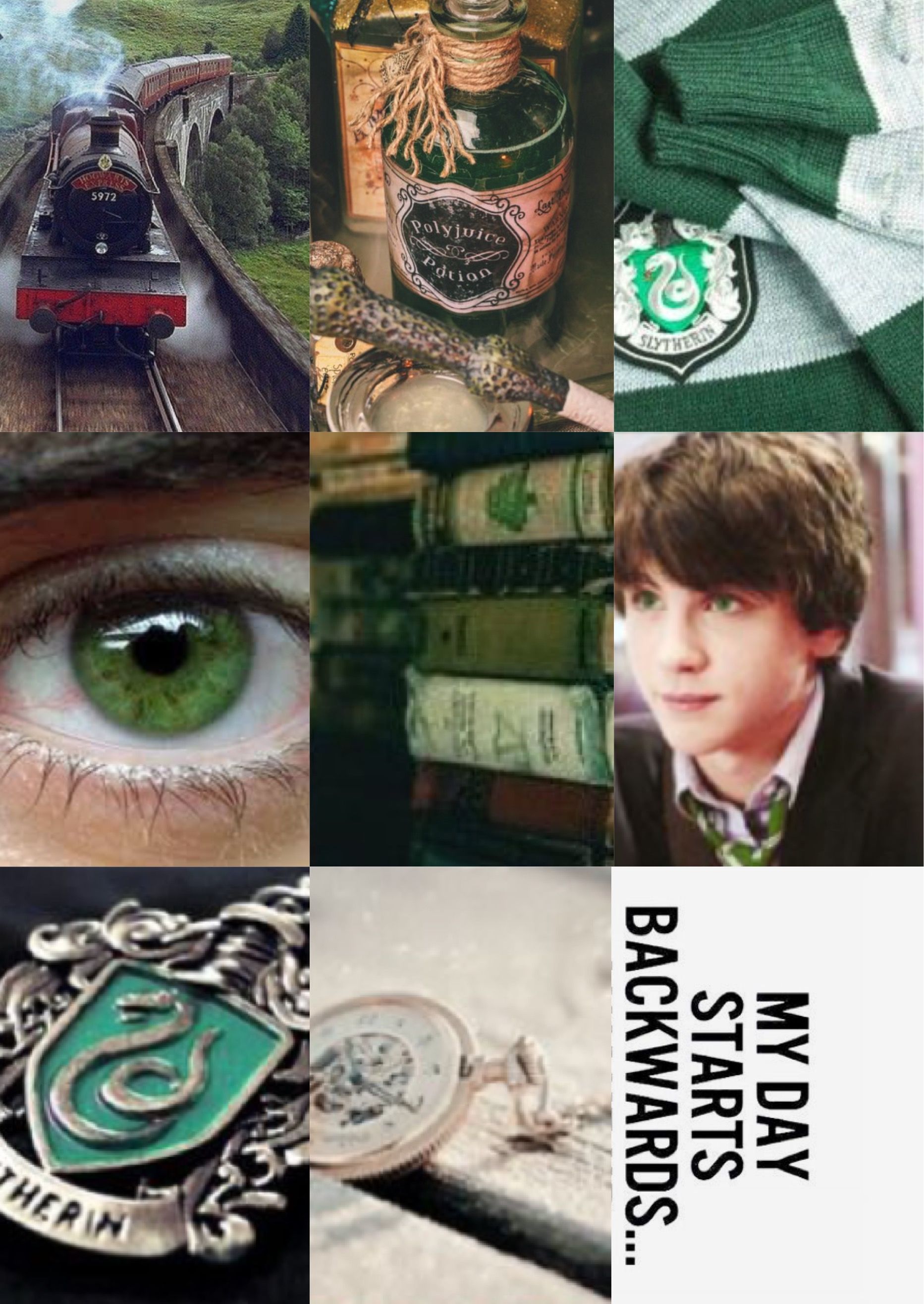 Albus Severus Potter Next Generation Harry Potter Aesthetic Inspiration Slytherin Albus Severus Potter Harry Potter Fantastic Beasts Harry Potter Characters
