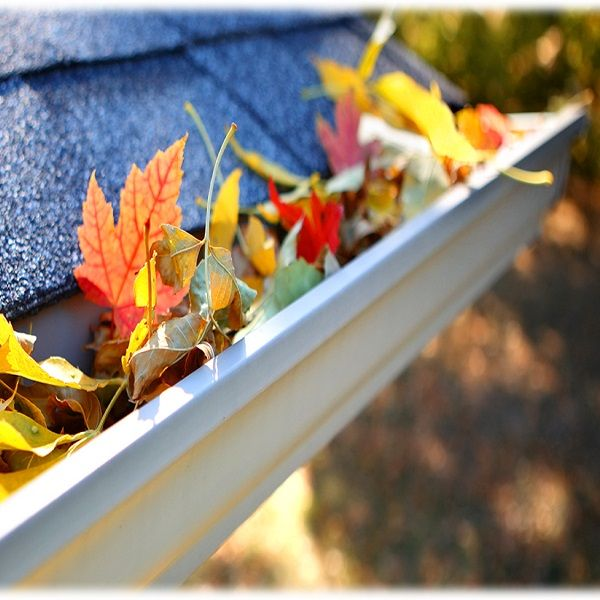 #TipsTuesday You should clean your gutters at least once in late fall after trees have finished losing their leaves (every 3 months if you have pine trees). Fallen leaves clog and break gutters causing water to run over the trough and fall along the foundation line which can lead to expensive problems. REMINDER: Safety First! #ProTip Use plastic gutter scoops. Metal planter scoops or old spatulas can scratch steel gutters giving rust an opportunity to form.