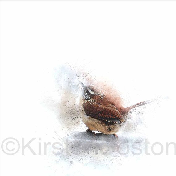 Wren Kirsten Boston Giclée Print Wild Bird Watercolour #bird #wren #watercolour #kirsten boston #spatter #painting