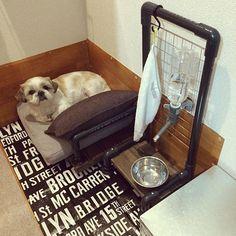 そのままでもリメイクでも セリアのワイヤーアイテム10選 犬 水飲み 犬の部屋 犬のトイレ