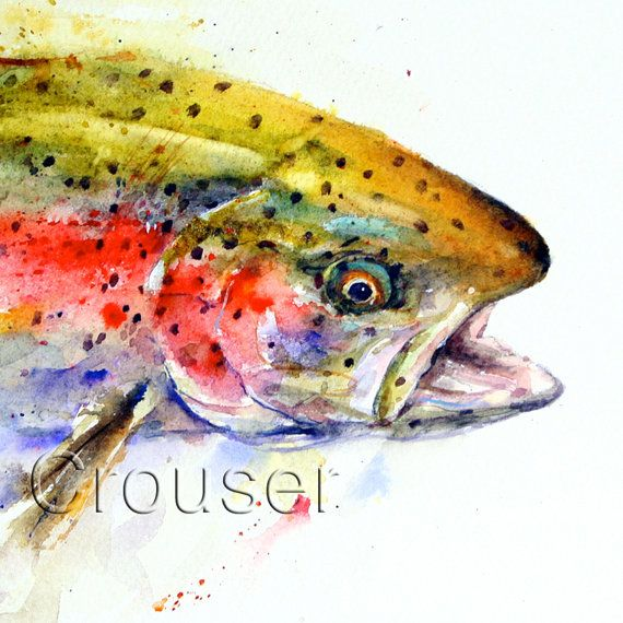 RAINBOW TROUT Fly Game Fishing Signed Art Print Drawing Picture Angling Present