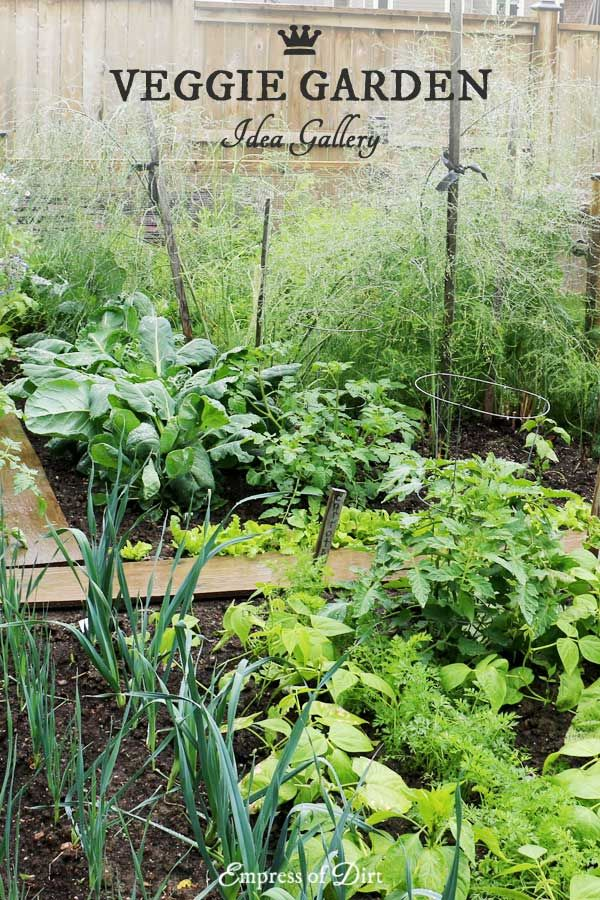 20+ Layout and Design Ideas for Home Veggie Gardens   Pinterest ...