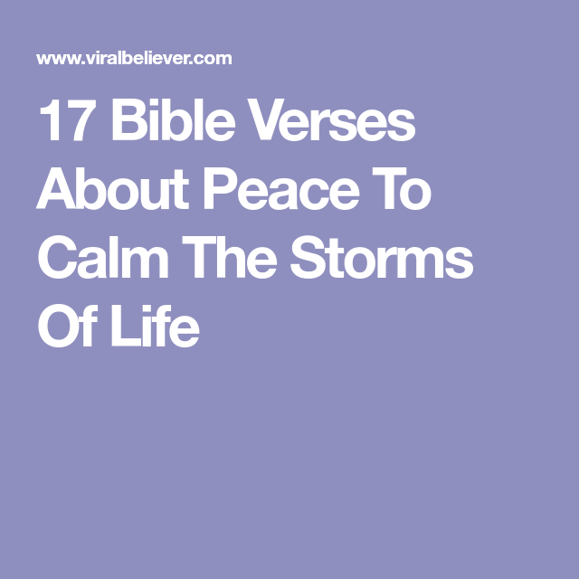 Calm After The Storm Quotes