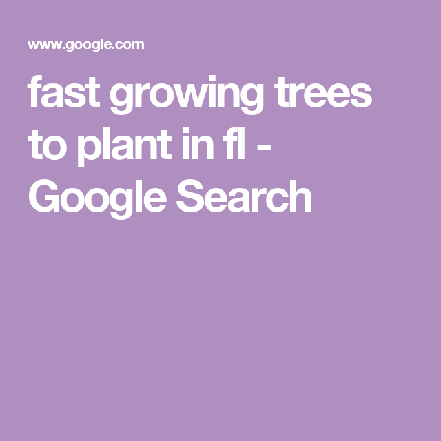 fast growing trees to plant in fl - Google Search