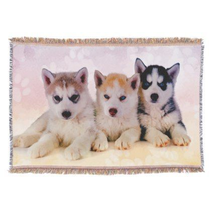 Siberian Husky Puppies Throw Zazzle Com Alaskan Siberian Husky