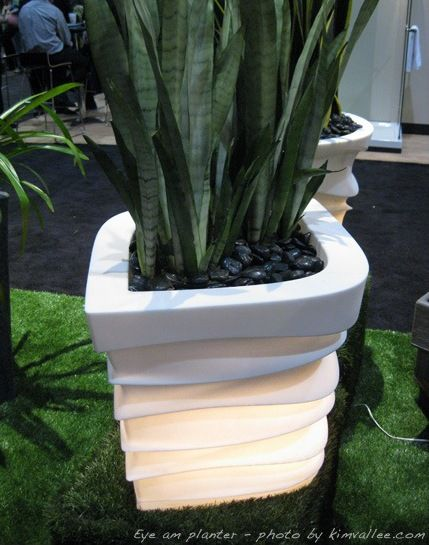 Eye Am Planter by Crescent Garden and designer Katya Warner
