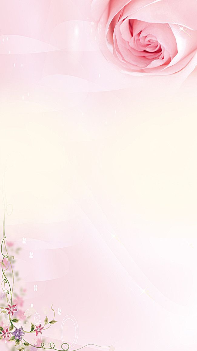 Small fresh pink roses h5 background