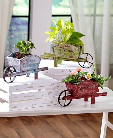 Mini Wheelbarrow Planters Wheelbarrow Planter Wheelbarrow Outdoor Flowers