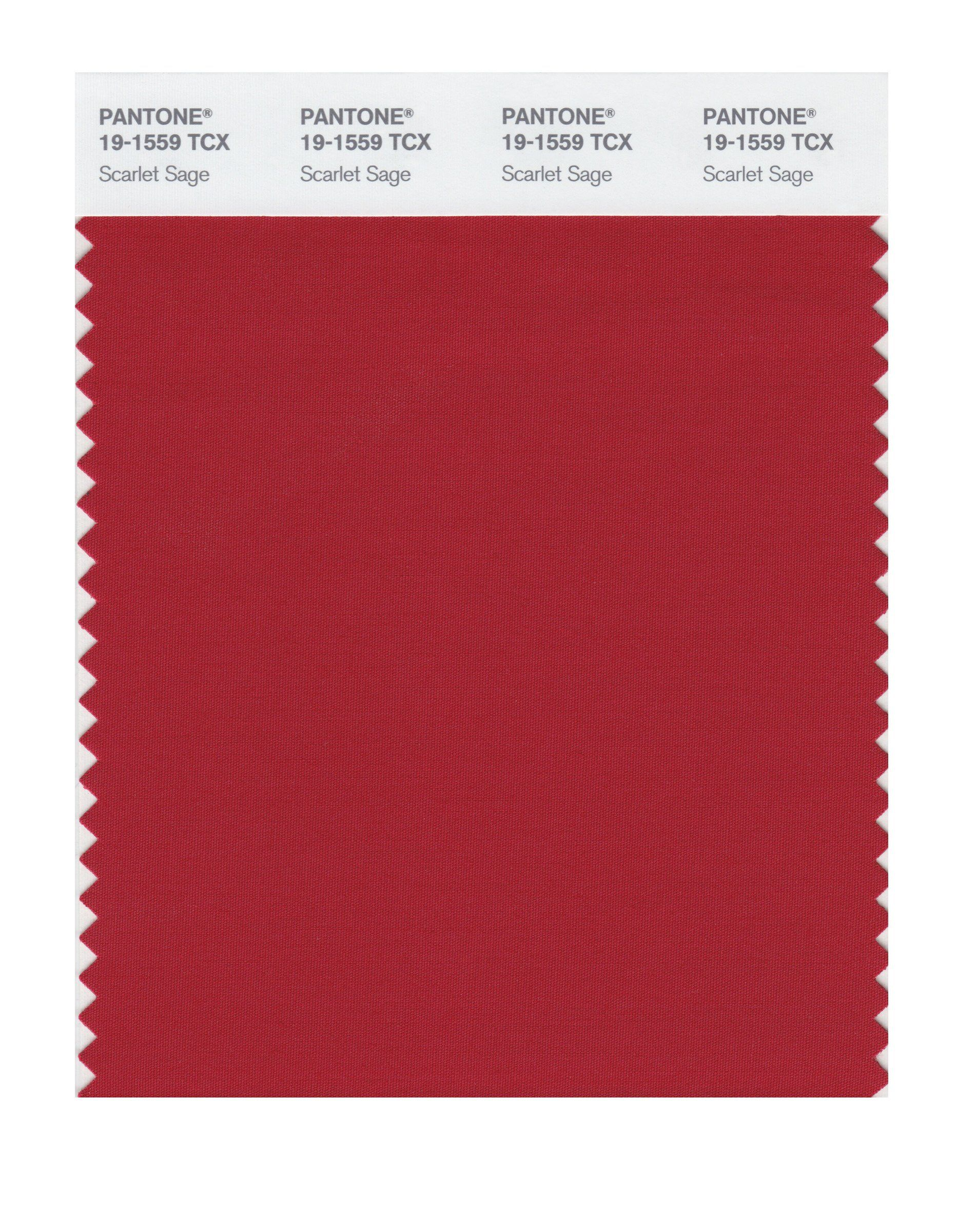Amazoncom Pantone 19 1758 Tcx Smart Color Swatch Card, Haute Red