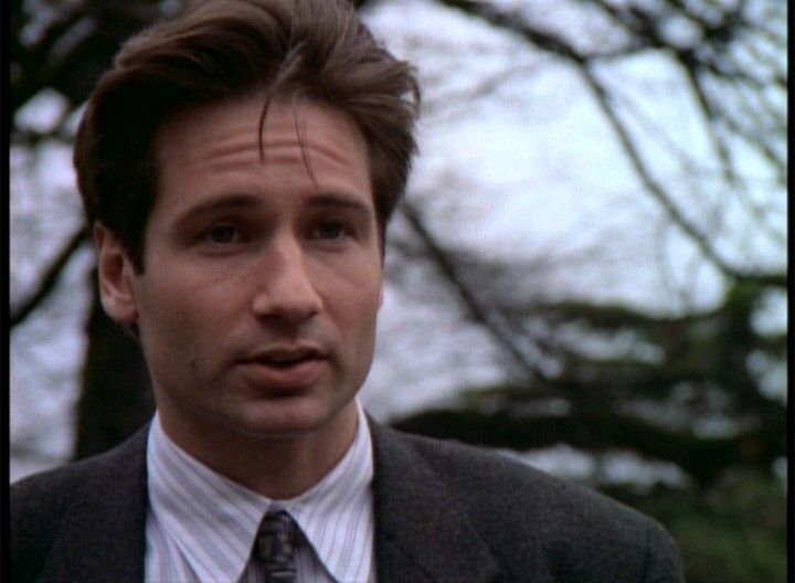 david duchovny, even now in his 40's he's still hot ...