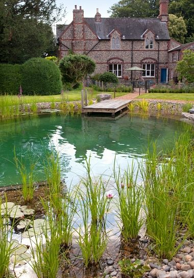 Natural swimming ponds should you build one in your garden natural swimming ponds pond - The pond house nature above all ...
