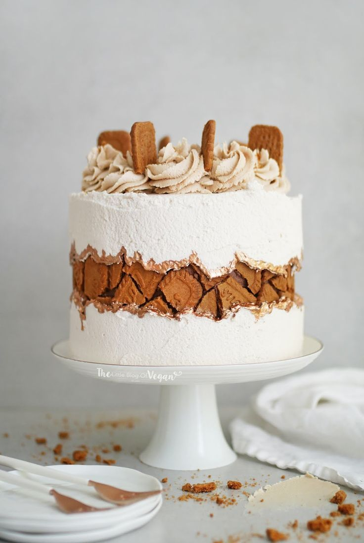 Biscoff fault line cake recipe #cakedesigns