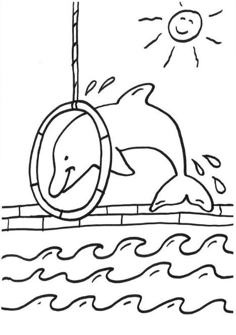 malvorlagen delfin youtube  tiffanylovesbooks