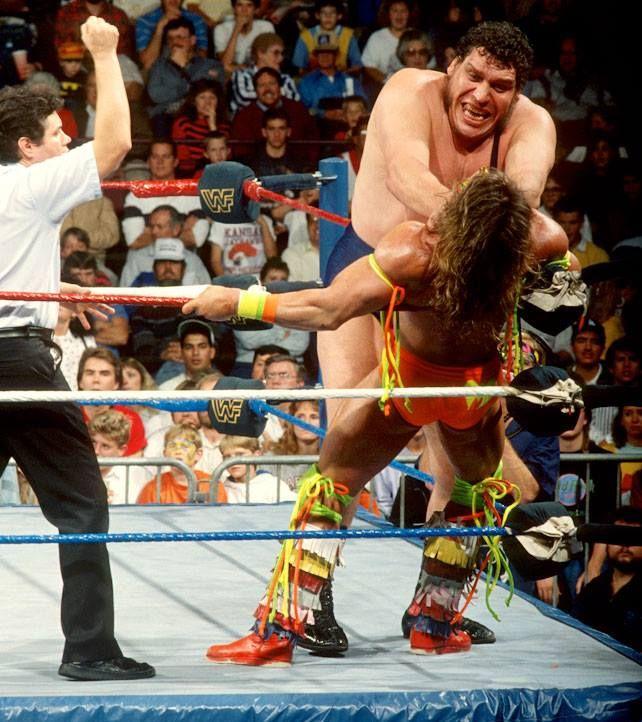 Andre the Giant vs Ultimate Warrior   Wrestling   Andre the
