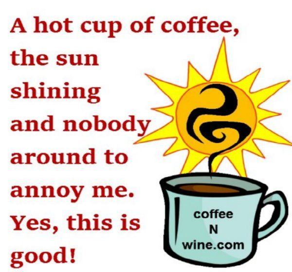 A Hot Cup Of Coffee A Hot Cup Of Coffee The Sun Shining And Nobody Around To Annoy Me Yes This Is Good Http Www C Coffee Cups Coffee Jokes Wine Com