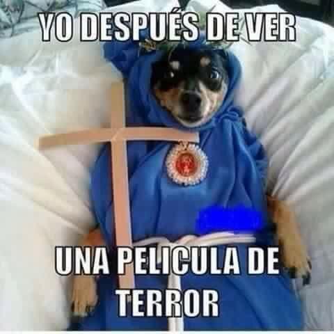 Memes del Terror © – #1