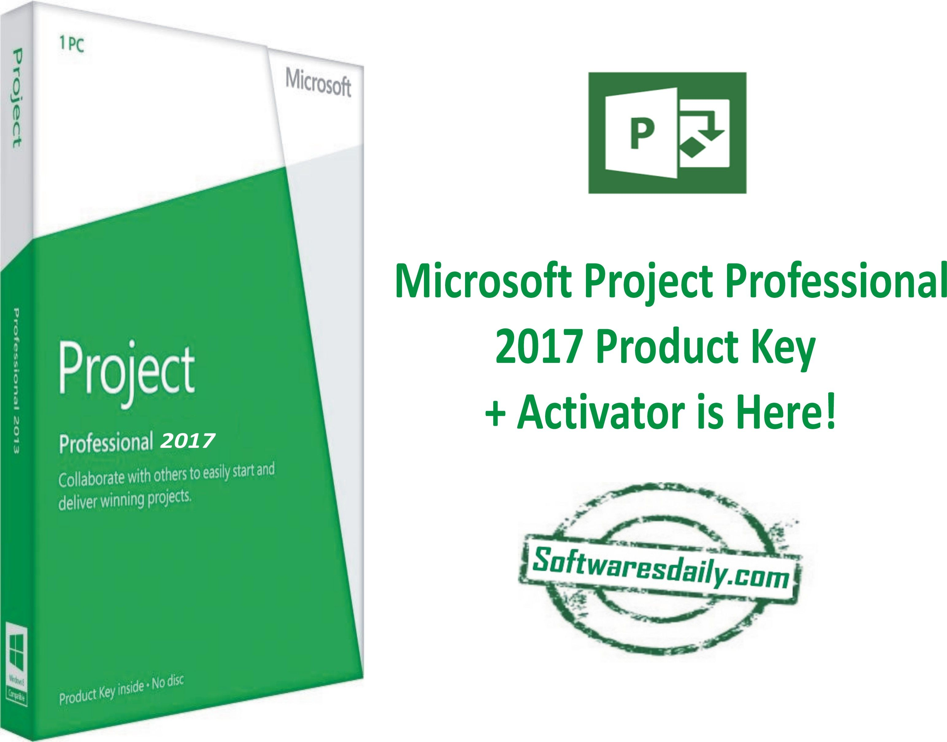 microsoft project 2013 professional activator