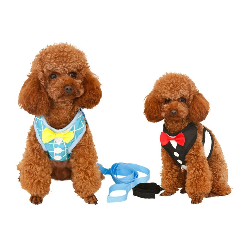 Comfortable Evening Dress Harness And Leash With Bow Tie Harness