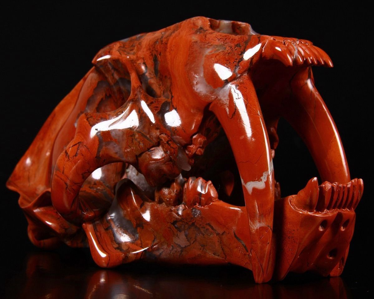 ✿ Red Jasper Carved Crystal Skullsmilodon Saber Tooth ✿