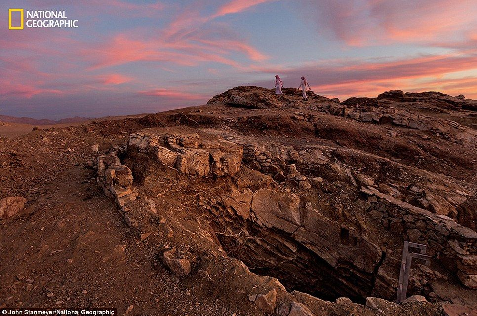 For centuries, the Al Bad oasis, near the Gulf of Aqaba in Tabuk, nourished camel caravans...