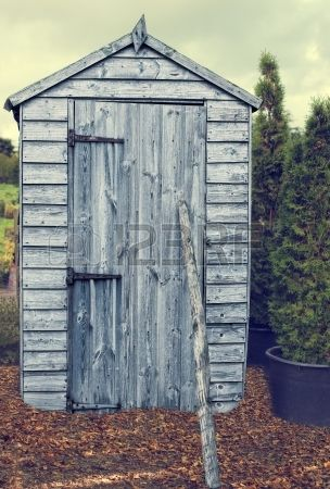 Garden shed in autumn with fallen leaves