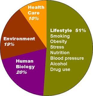 Epidemiology Cafe Social Determinants Of Health Social Determinants Of Health Infographic Health Adolescent Health